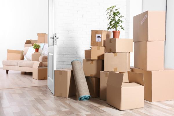 Imagini pentru MOVING COMPANY
